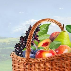 Tutti Frutti ( Frucht-Mix )